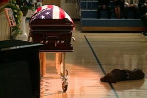 Dog Lab laying in front of casket