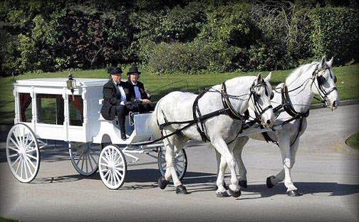 Horse-and-carriage.jpg