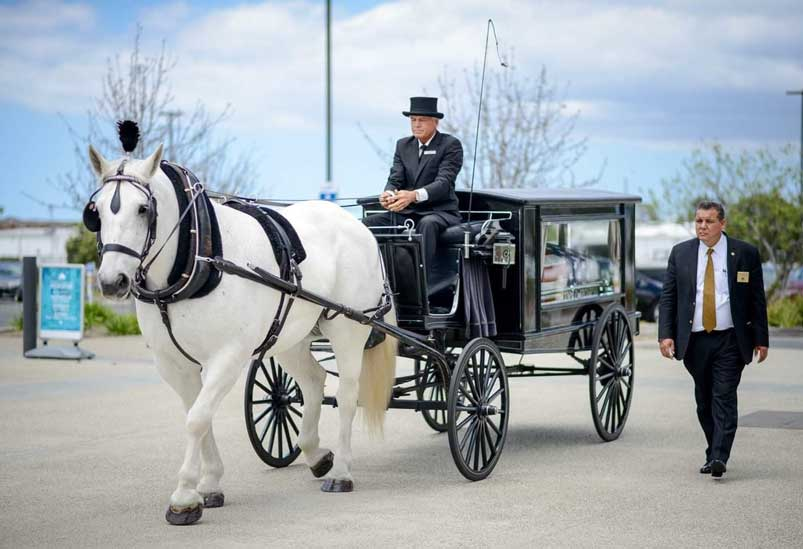 Carriage with horse funeral service